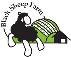 BlackSheepFarm_final
